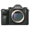 Specification of Pentax KP rival: Sony Alpha a9.