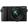 Specification of Leica V-Lux 5 rival: Panasonic Lumix DC-GX9.