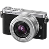 Panasonic Lumix DMC-GM1 tech specs and cost.