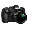 Specification of Panasonic Lumix DMC-ZS100  rival: Olympus OM-D E-M1 Mark II.